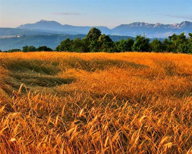 Serbian Carpathians - Serbia