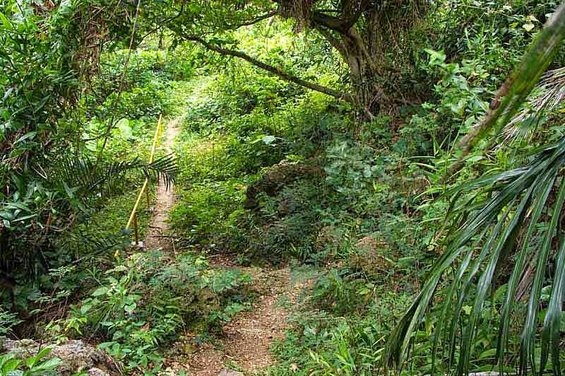 path, gusuku, trail