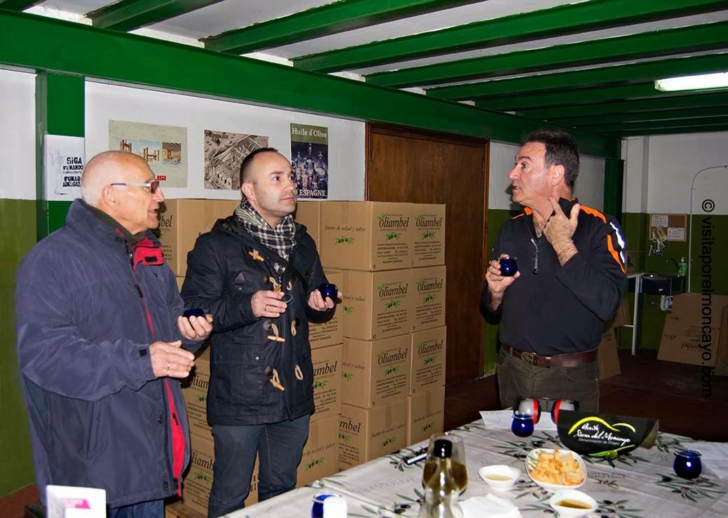 cata de aceite aceituna oliva aceite oliambel almazara acteite sierra del Moncayo
