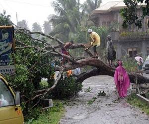 Philippines_Typhoon _Bopha_Pablo_damage_picture