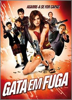 Download - Gata em Fuga DVDRip - AVI - Dual Áudio