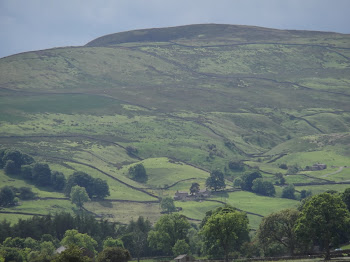 On the way to Reeth