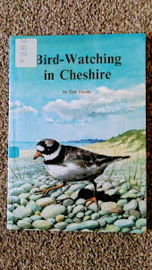 Bird Watching in Cheshire