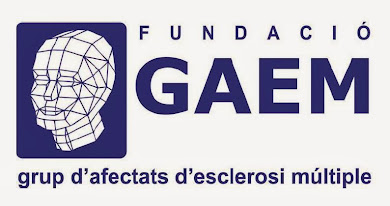 FUNDACIÓ GAEM