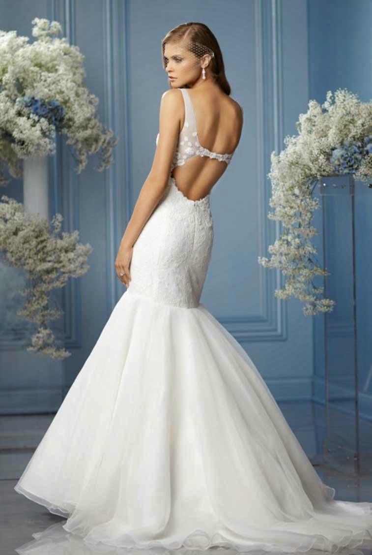 Vera Wang Mermaid Wedding Dresses Ideas photos hd
