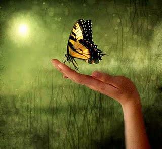 Η Θεωρία του Χάους και το Φαινόμενο της Πεταλούδας