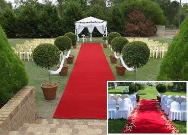 P talos naturales alquiler de plantas para la decoraci n - Alquiler alfombras ...