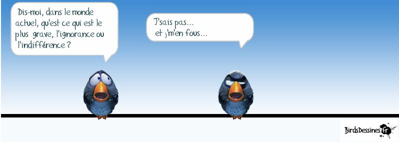 BLAGUE A PART... - Page 14 Birds+indiff