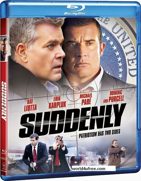 Free Download Suddenly 2013 Hindi Dubbed Dual BRRip 480p 300mb ESub HD