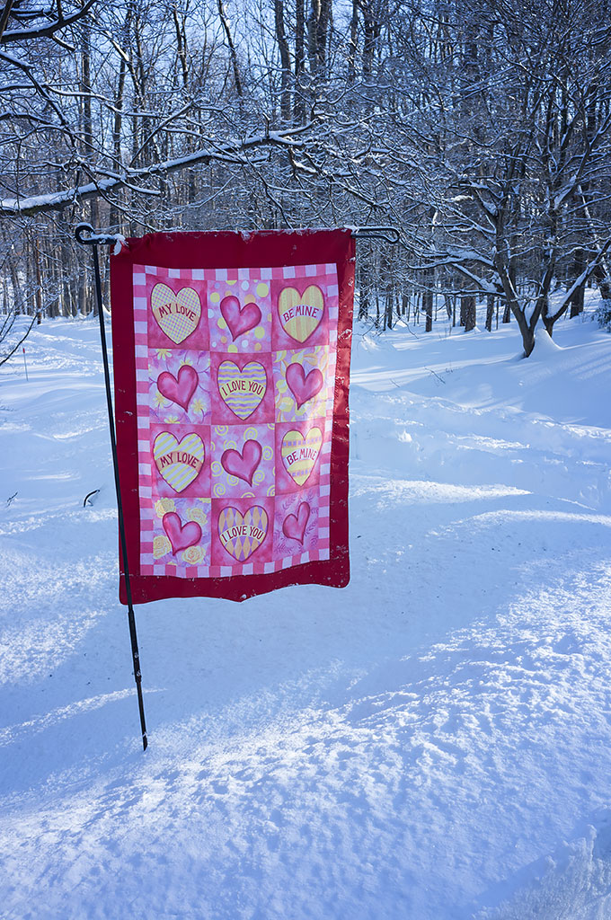 Valentine's Day flag in the snow