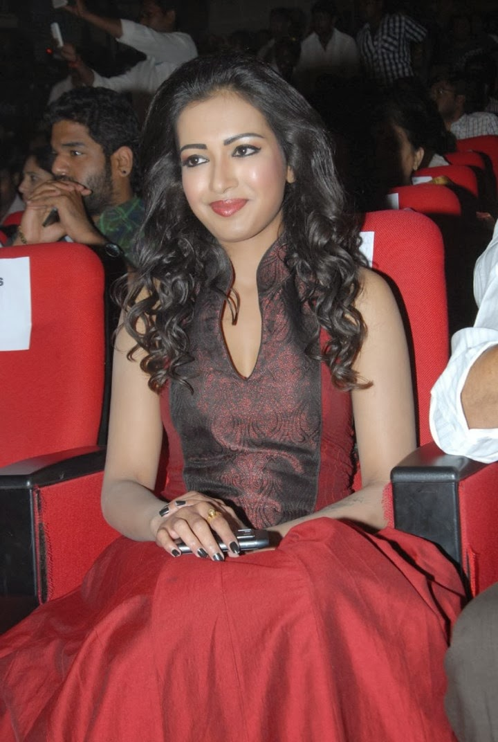 Actress Catherine Tresa In Red Gown Picture Gallery Free Wallpapaer Images