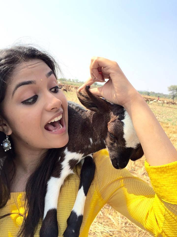 Actress Keerthi Suresh Real Life Photos Hd Latest Tamil Actress Telugu Actress Movies Actor