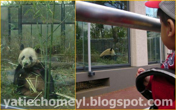http://2.bp.blogspot.com/-EdVIku06KdY/TbVltZoJ0JI/AAAAAAAAK00/ZoIEbqnFtIg/s1600/edited%2Bpics3.jpg