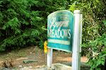 Evergreen Meadows