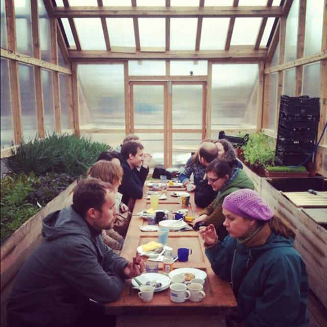 Projeto incentiva o plantio de alimentos na cidade
