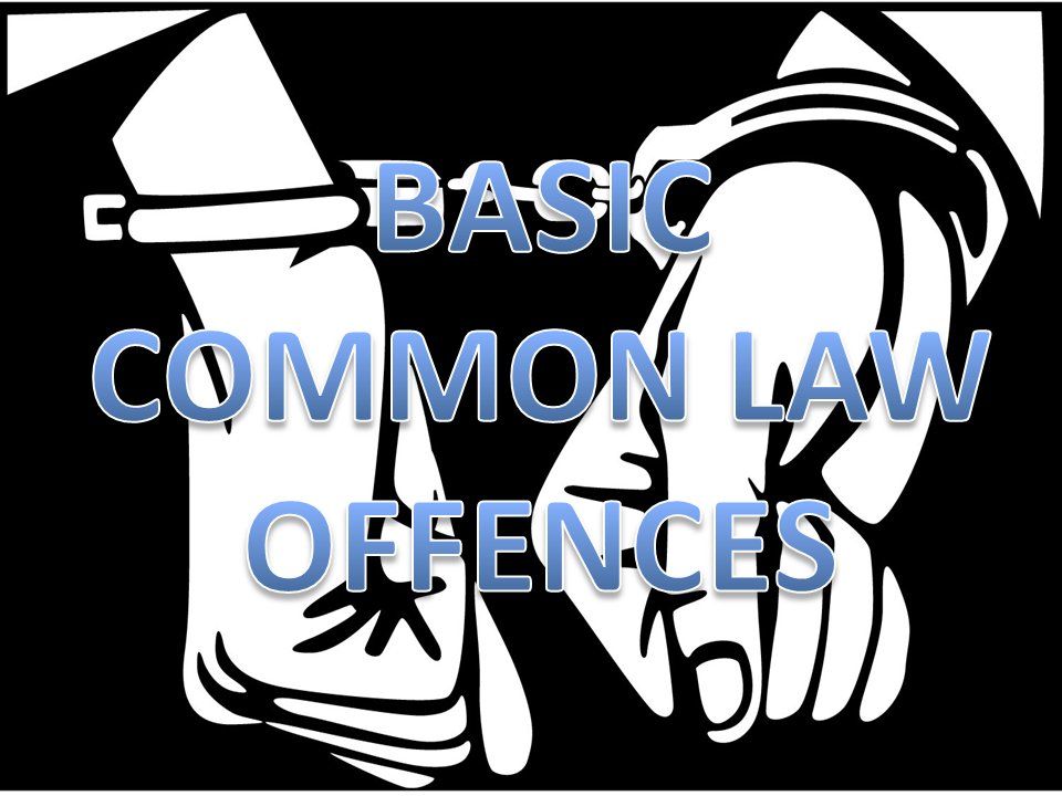 common law in south africa pdf