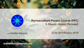 Permaculture Forest Course (PFC)