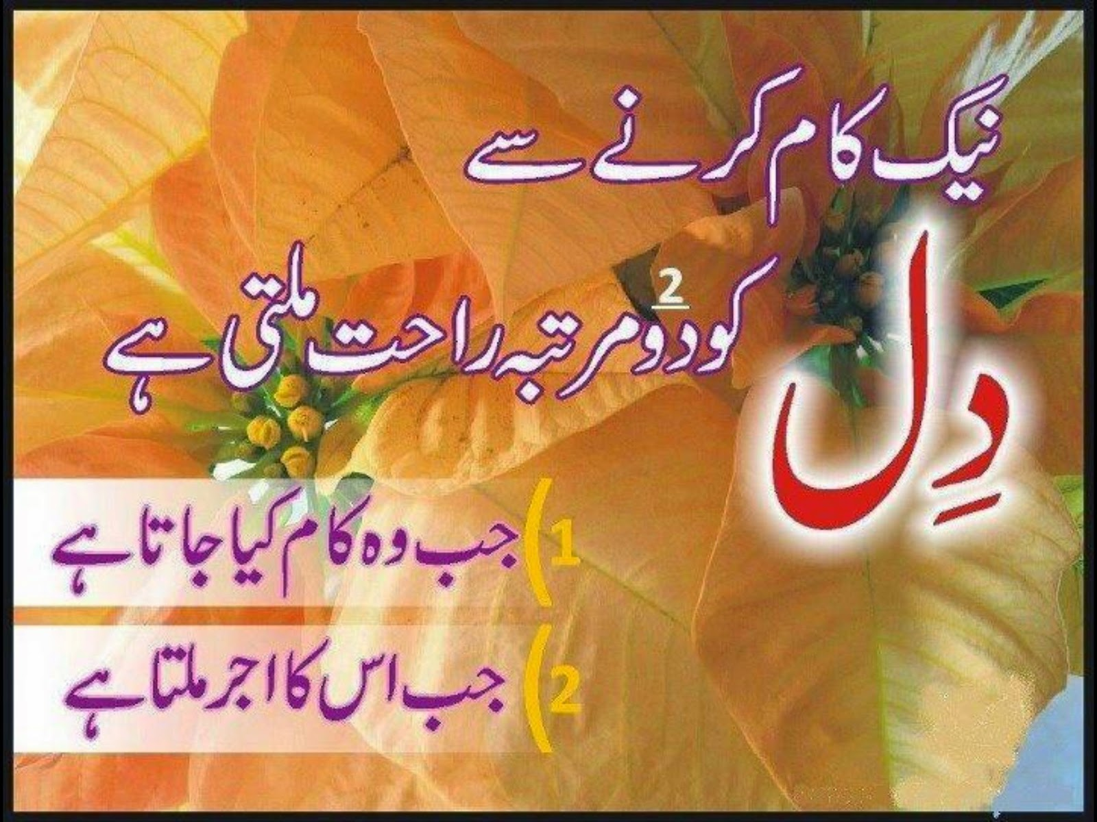Islamic Quotes About Marriage In Urdu Islamic Quotes