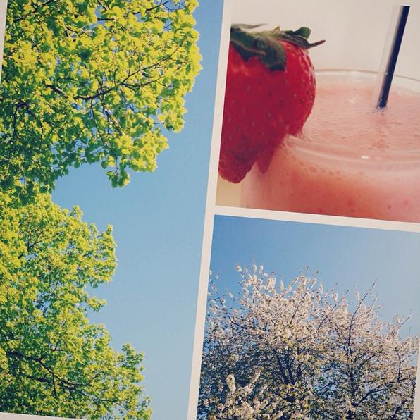 smoothie summer