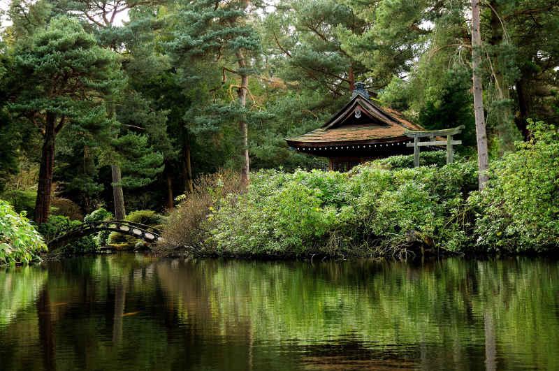 Ademhaling Meditatie 'Aandacht voor de Ademhaling' brengt aandacht naar de brug tussen lichaam en geest.