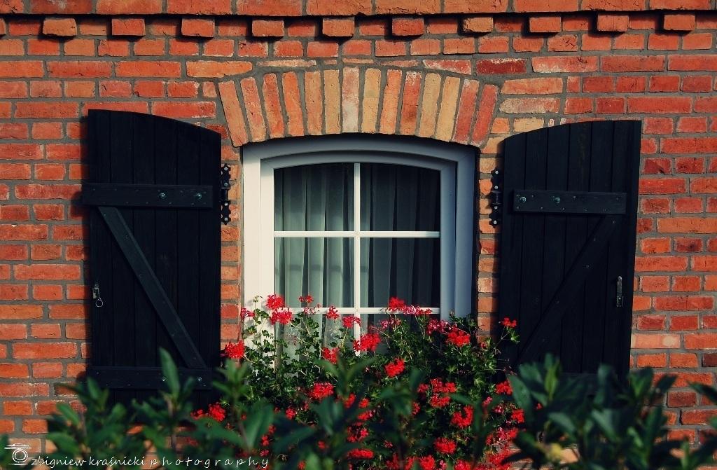 Motyw przewodni: okna
