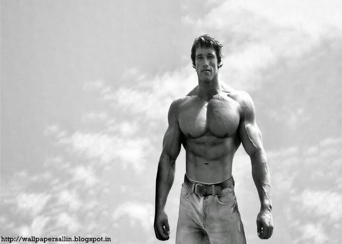 arnold schwarzenegger wallpaper bodybuilding