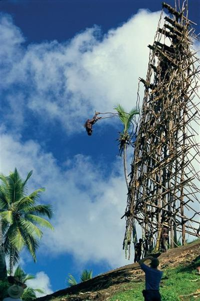 Land Diving In Vanuatu