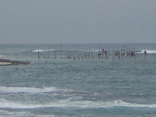 Pêche au Sri Lanka