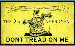 Don't Tread on Me 2nd Amendment Style