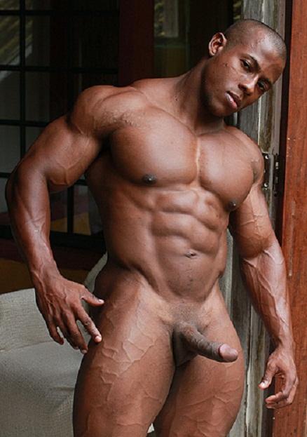 Orso Gay 83