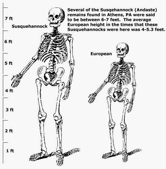 Spanish Hill Giant Skeletons