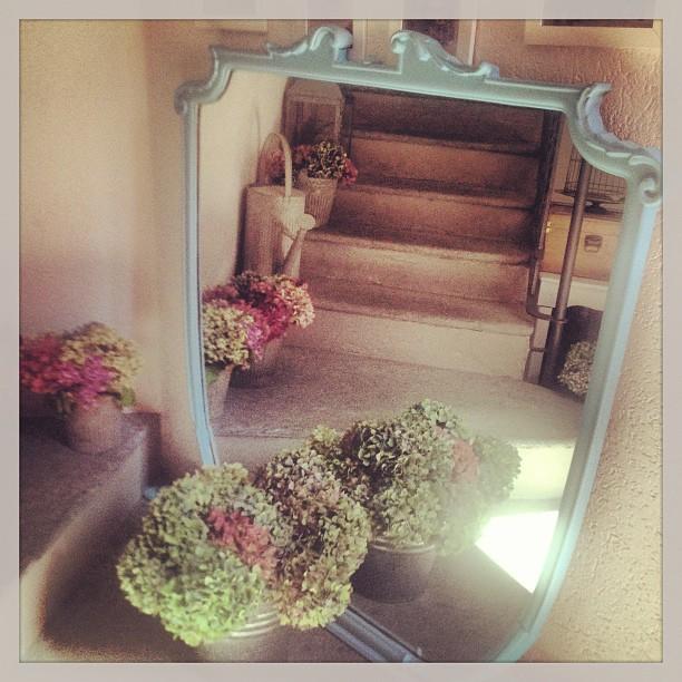 My little cozy home cilli studio le ortensie per l 39 inverno - Ortensie colori ...