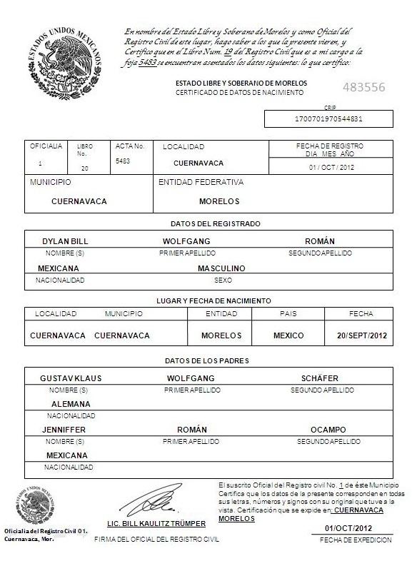 Encantador Certificado De Nacimiento En Chicago Il Ilustración ...