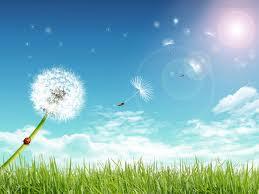 Que significa soñar con sol