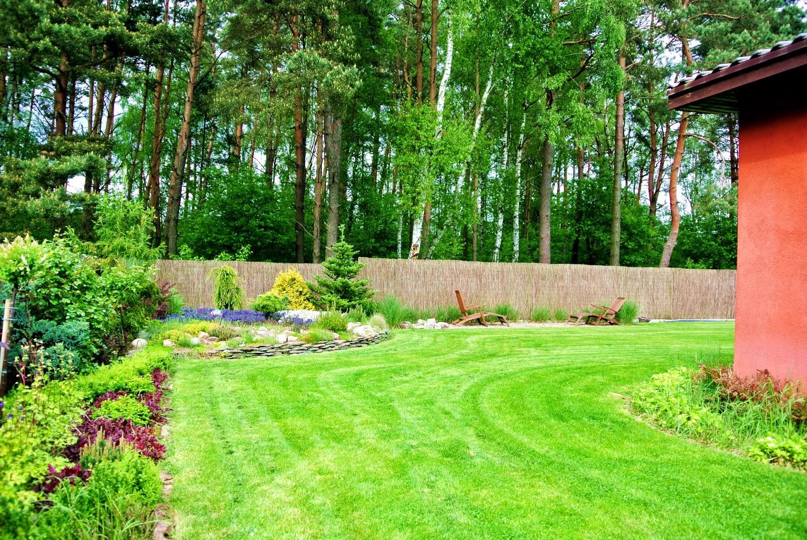 piękny trawnik,trawnik na wiosnę,pielęgnacja trawnika,rozchodnik,szkółka roślin,dom przy lesie,pomarańczowa elewacja,grill przy domu,murowany grill,choinka
