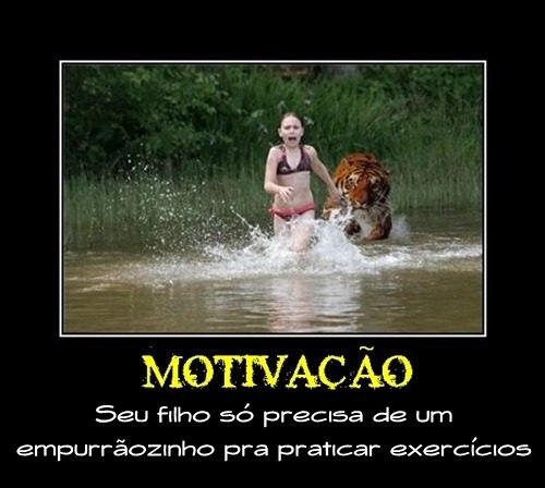 Desmotivacionais,Humor, OGatoNinja.blogspot.com