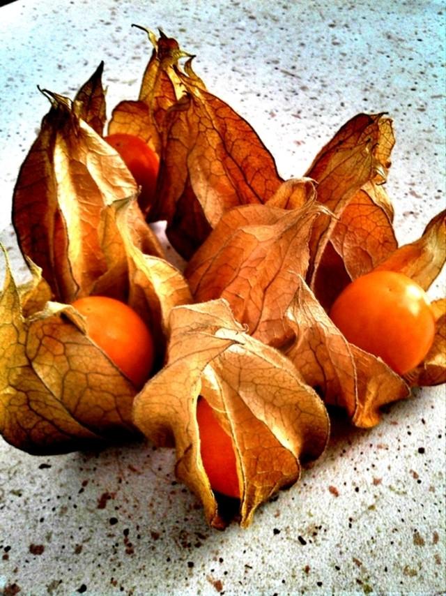 Miechunka - owoce