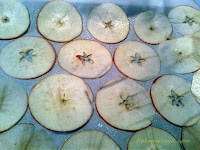 crisp-apple-chips-with-cinnamon-twist-step-3