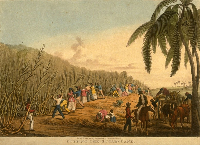 a history of the colony of st domingue in the late 1700s Secret history or the horrors of st domingue ports and sailed in late 1801 for st domingue guignons in france st domingue before 1802 the.