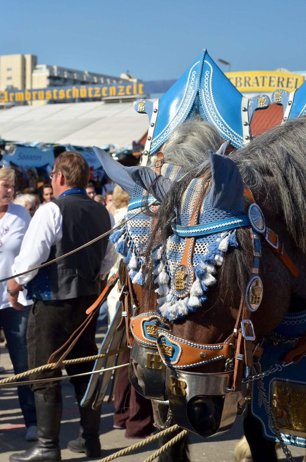 oktoberfest-pferde