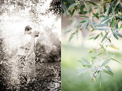 olive-grove-sprinklers