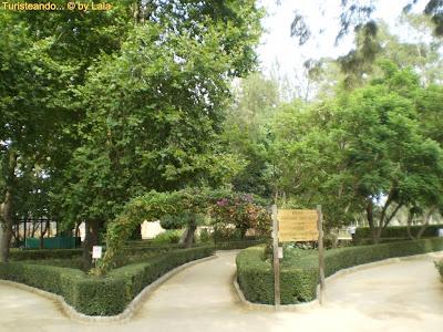 Jardin Botanico Parque Prudencio Navarro Ayamonte