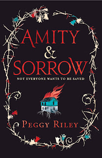Book cover of Amity & Sorrow by Peggy Riley
