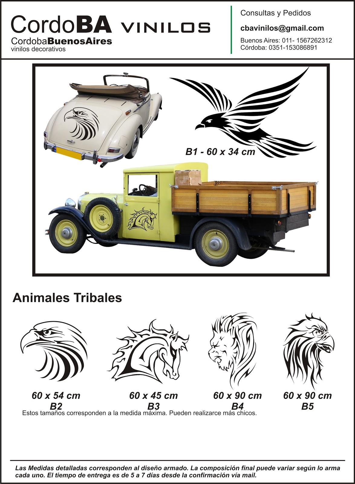 C rdoba vinilos decorativos vinilos para autos y motos for Vinilos para coches