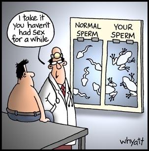 Funny Sex Image Joke