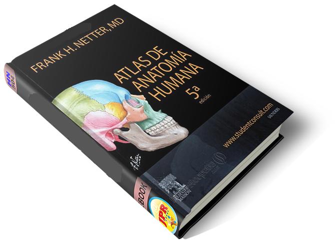 Frank H. Netter: Atlas de Anatomía Humana (5ta ed.) (2011) ~ Villa ...