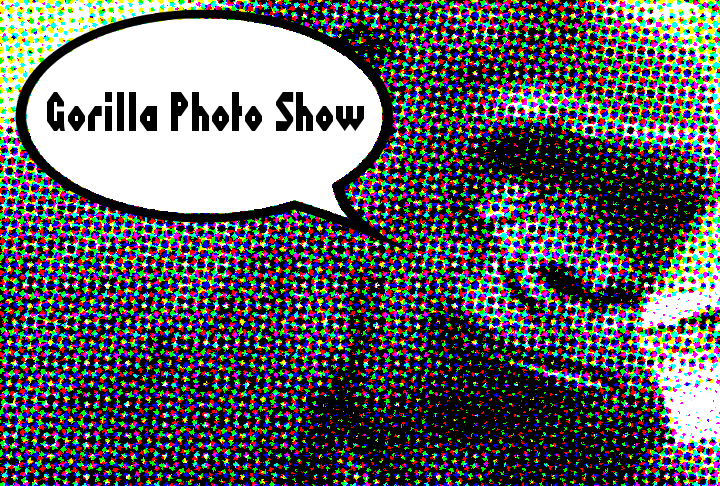 Gorilla Photo Show