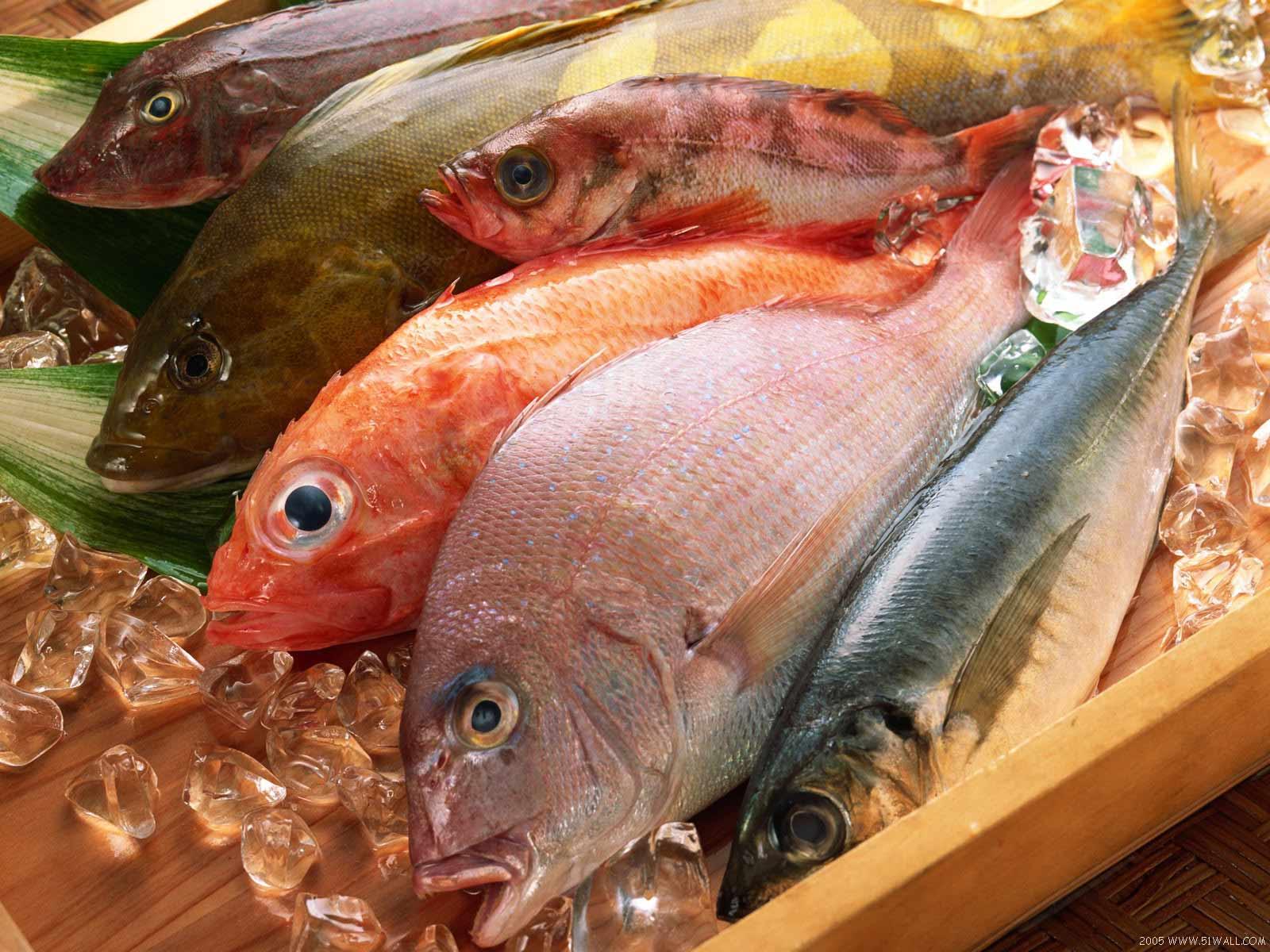 Ciencias Culinarias  Los Pescados