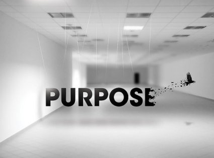 Purpose | 5 Major Areas of Web Design
