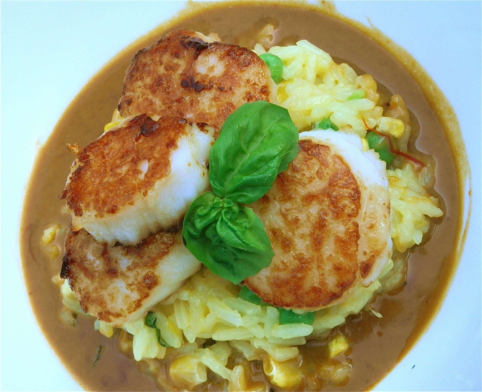 Pan Seared Scallops Over Rice with Orange Saffron Sauce